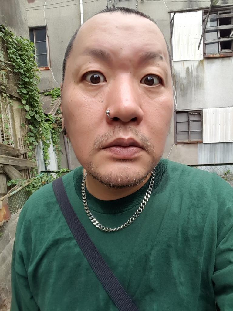 f:id:streetpunkshuji:20170803152929j:plain