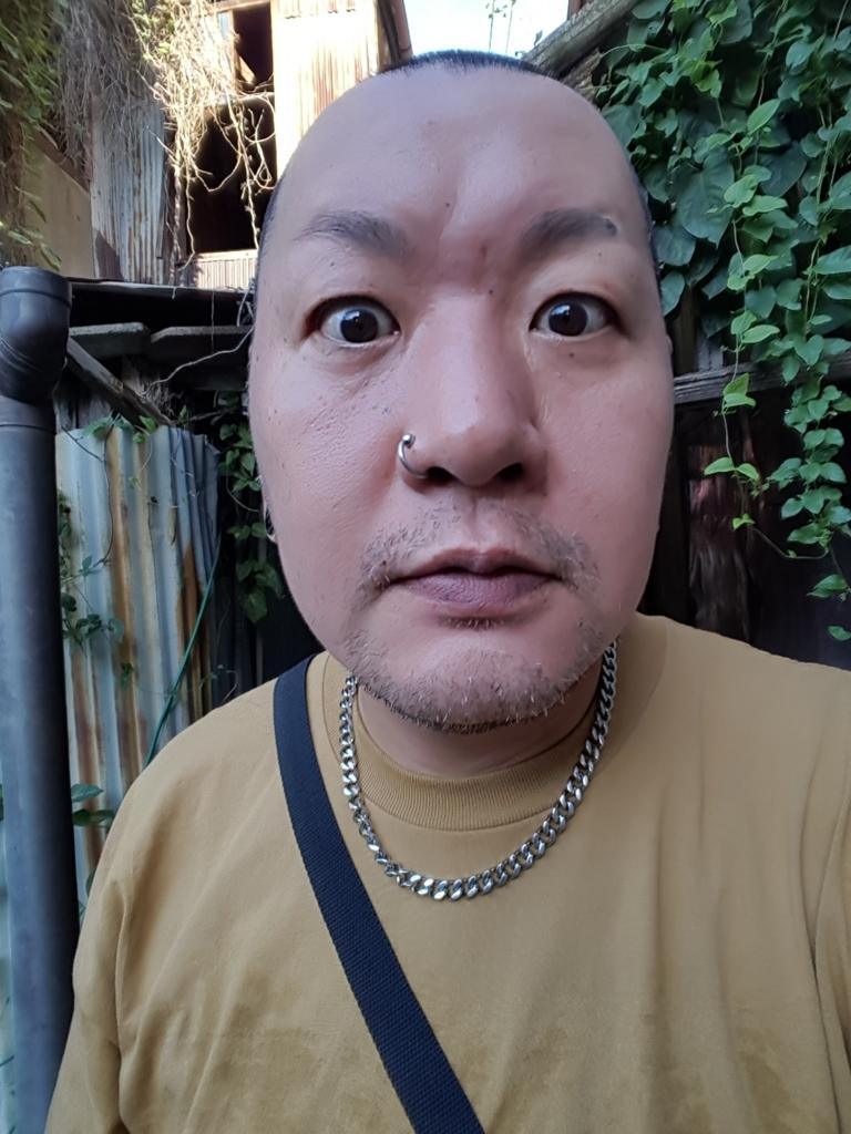 f:id:streetpunkshuji:20170809171001j:plain
