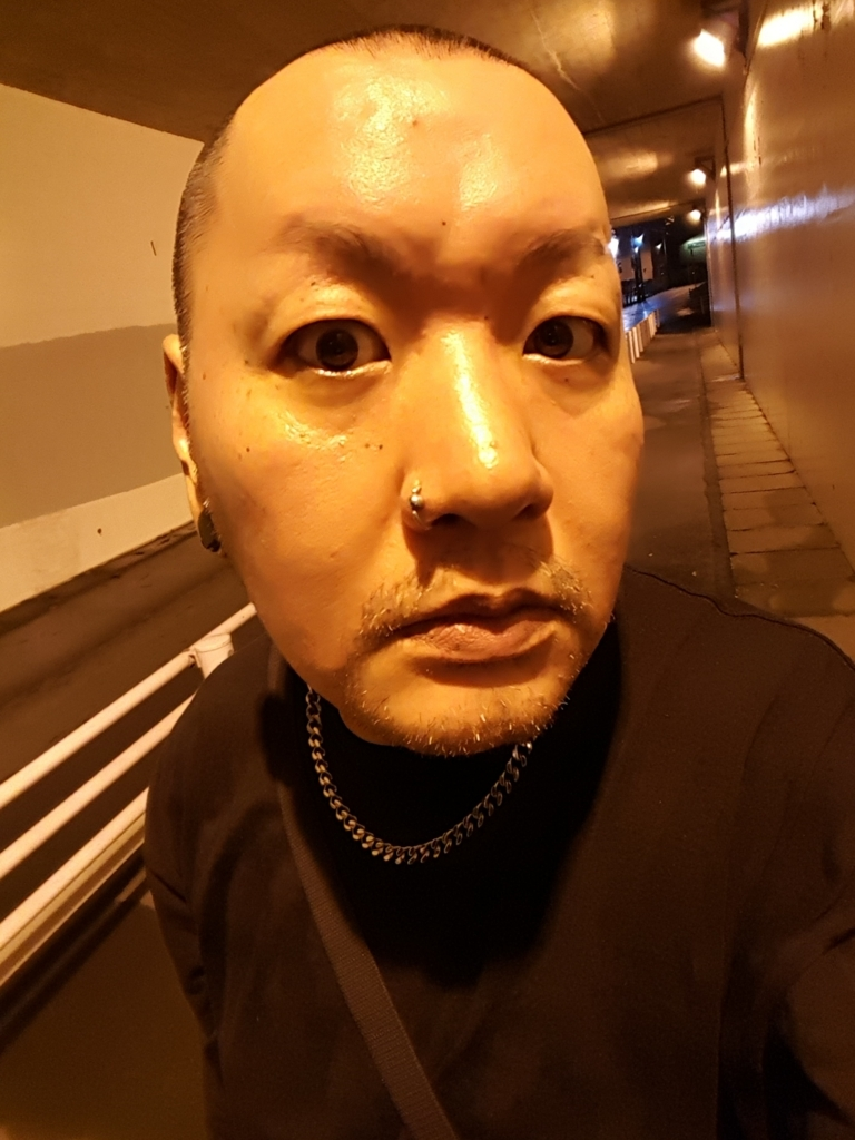 f:id:streetpunkshuji:20170811192916j:plain