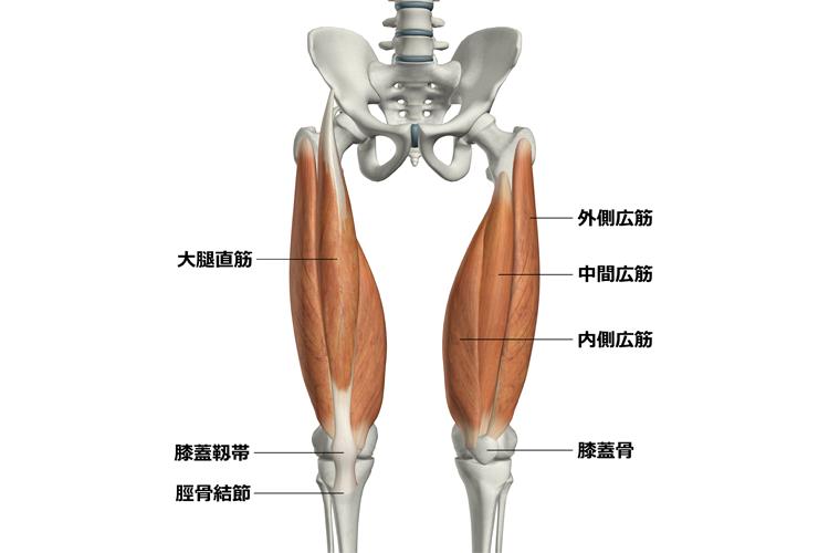 f:id:stretch-profesional:20180419170252p:plain