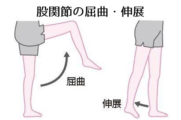 20180525104817 - 腰痛はどこの筋肉を鍛えればいいの?プロおすすめ筋トレ④選
