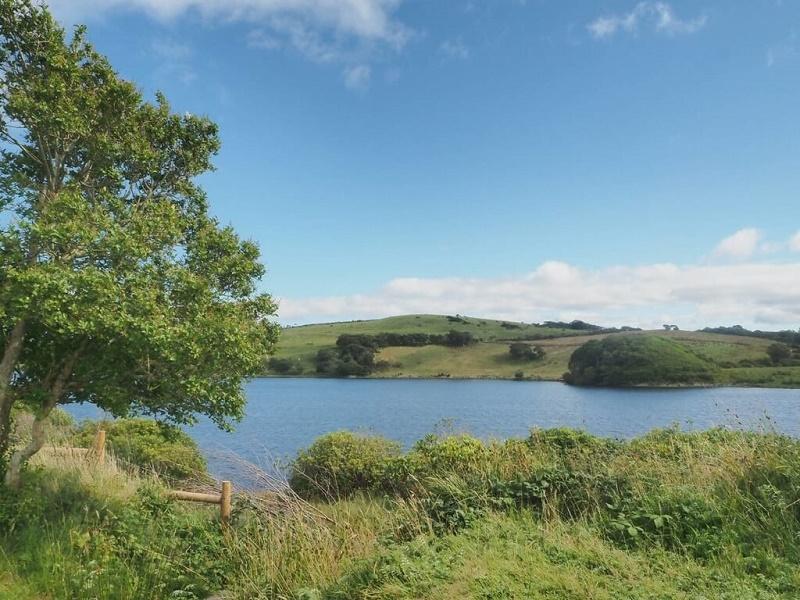 アイルランドの景色