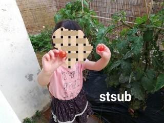 f:id:stsub:20190421131523j:image