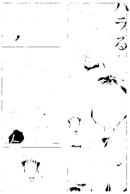 f:id:studio_one:20170216114845p:plain