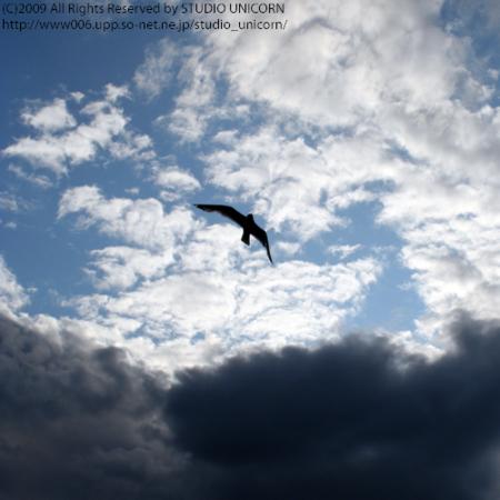 f:id:studio_unicorn:20091001031540j:image