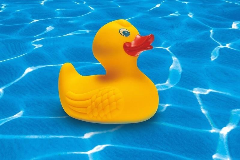 rubber-duck-248093_1280