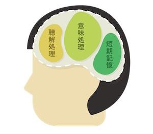 brain4-1