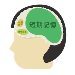 brain4-2-comp