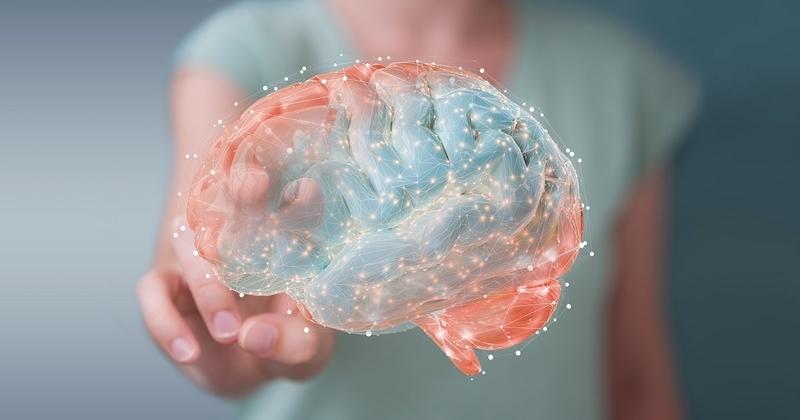 脳血流を増やす習慣02