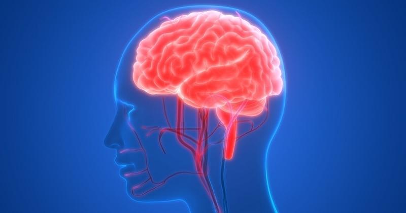 賢い脳をつくる最高習慣05