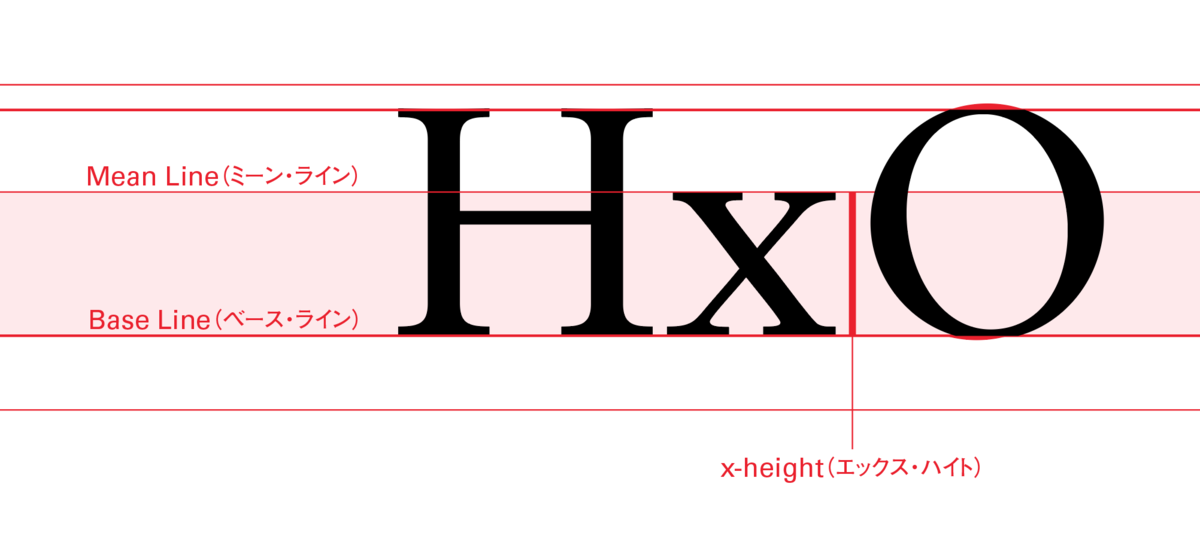 x-height(エックス・ハイト)