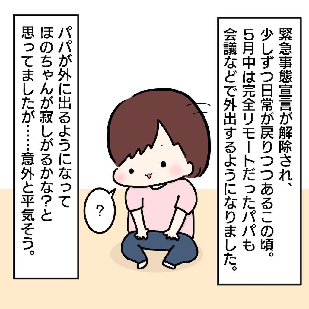 f:id:su_pip:20200609010905j:image