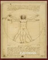 アカデミックなめいが[ウィトルウィウス的人体図]