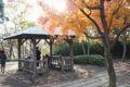 舞岡公園 紅葉