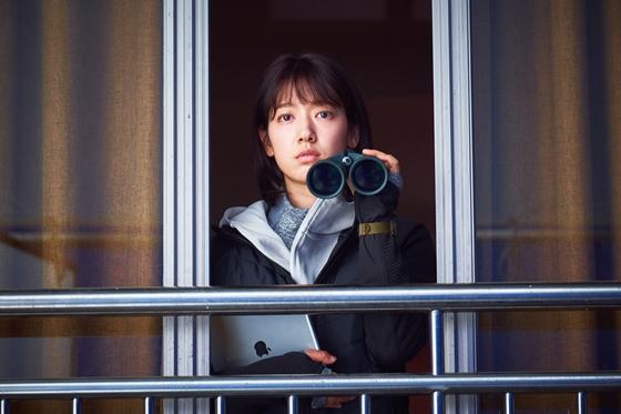 パクシネ 韓国映画