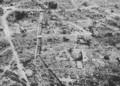 [hamamatsu][ww2] 1945年大空襲後の浜松