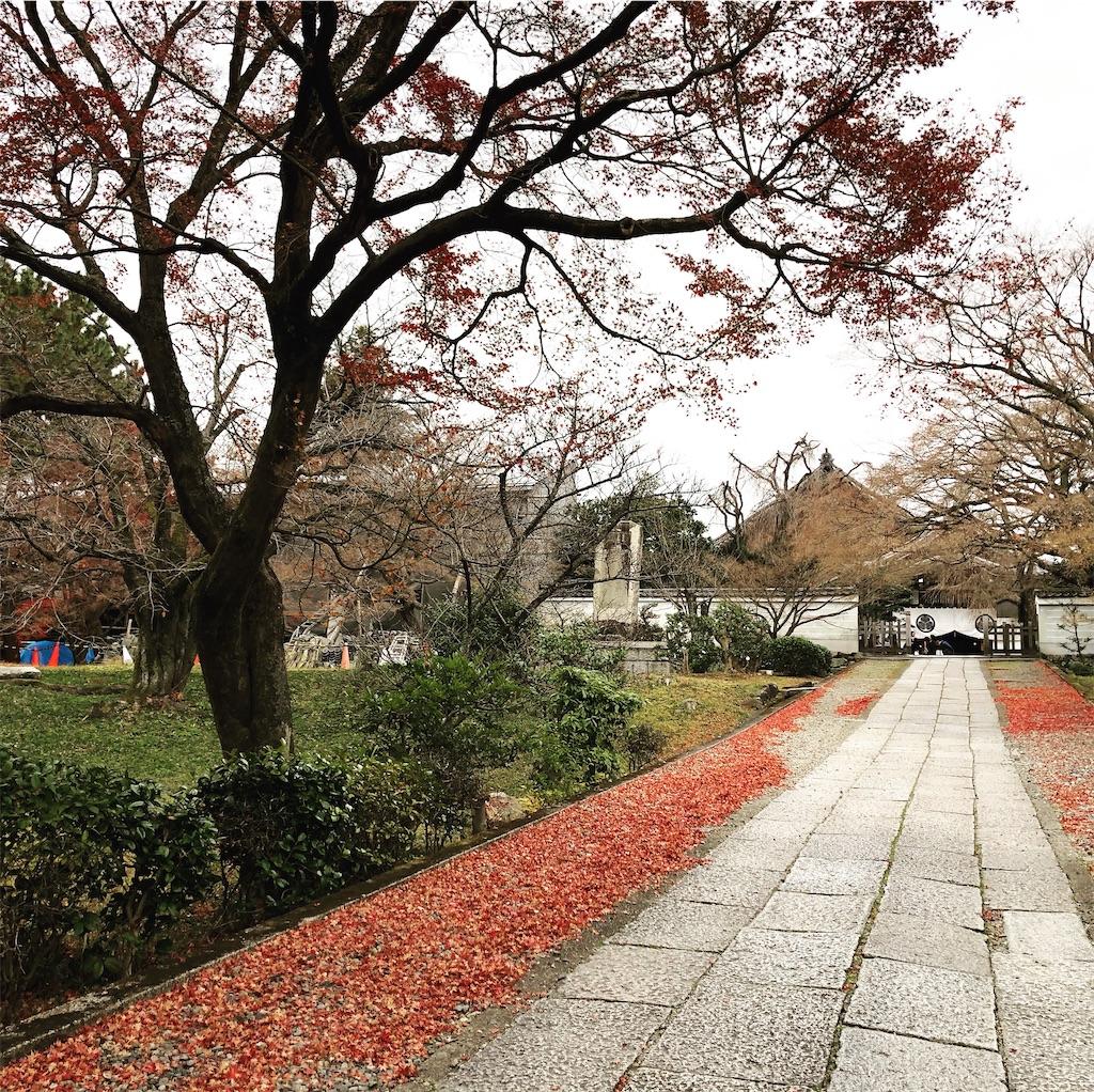 f:id:suehirochan:20191221214936j:image