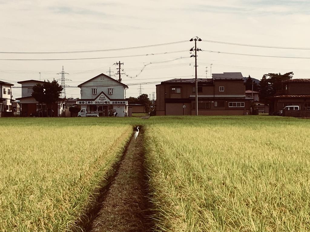 f:id:sugahirose:20180916140102j:plain