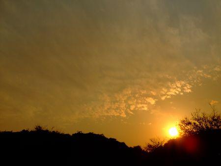 夢の島公園にて -日が沈む