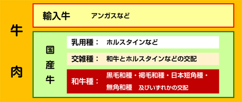 f:id:sugimoto_toyota_factory:20210329145224j:plain