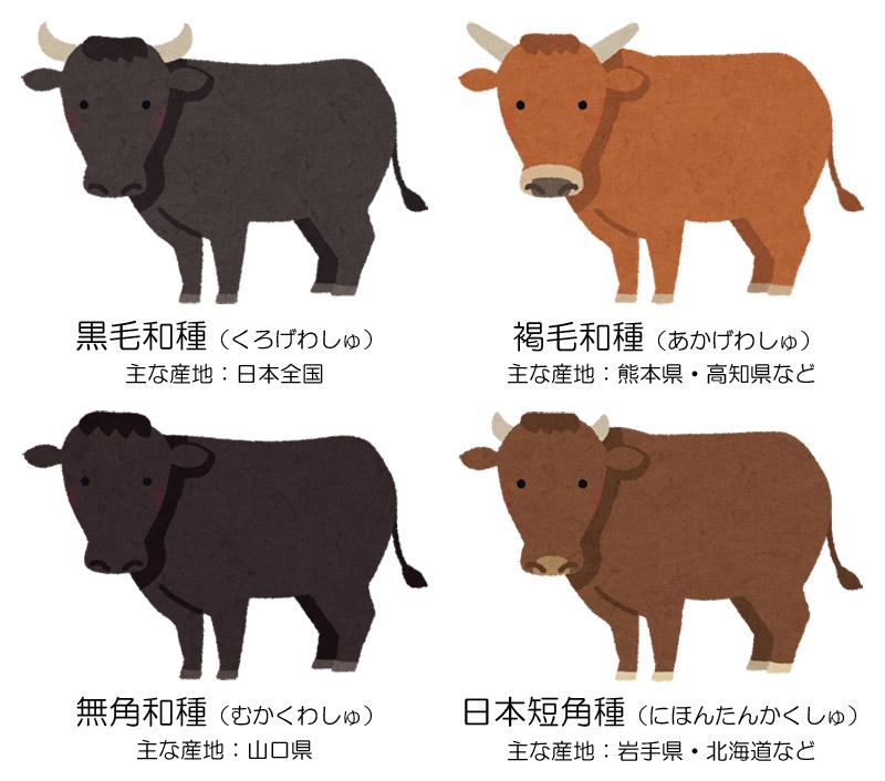 f:id:sugimoto_toyota_factory:20210329153853j:plain