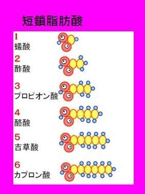 f:id:sugimuratoshio4:20170404112217j:plain