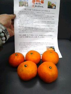 f:id:sugimuratoshio4:20170902072206j:plain