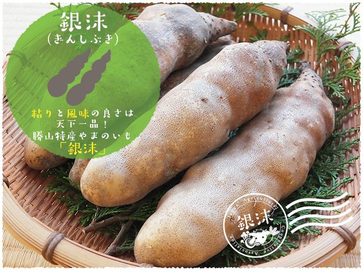 f:id:sugimuratoshio4:20171101184911j:plain