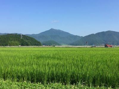 f:id:sugimuratoshio4:20171211091733j:plain