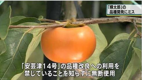 f:id:sugimuratoshio4:20180321090210p:plain
