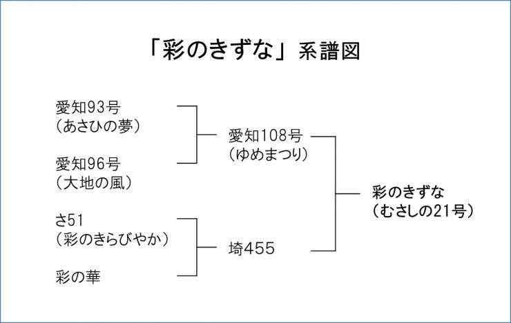 f:id:sugimuratoshio4:20180605150922p:plain