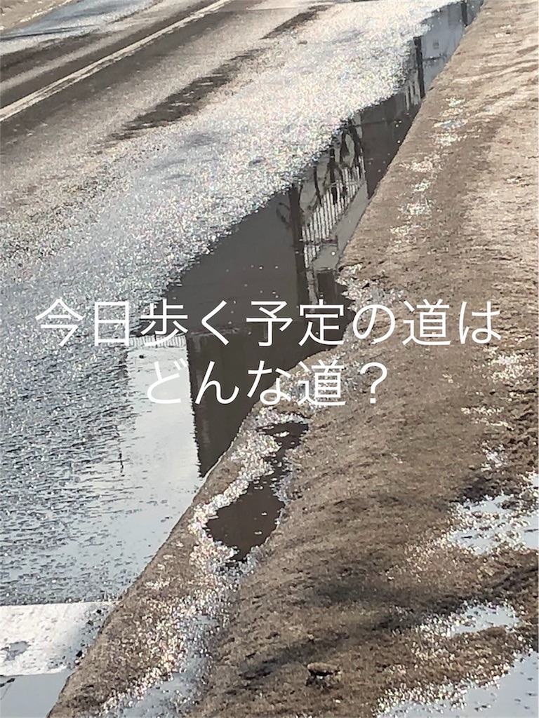 f:id:sugita-labo0328:20190305123714j:image