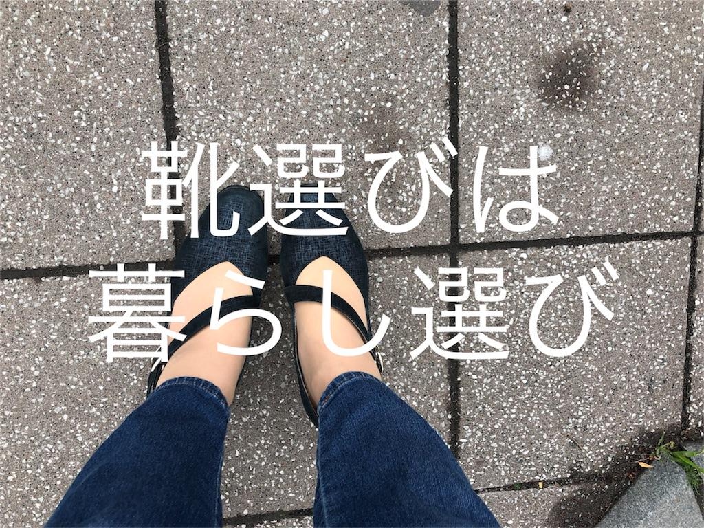 f:id:sugita-labo0328:20190522082321j:image