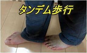 f:id:sugita-labo0328:20200110070125j:plain
