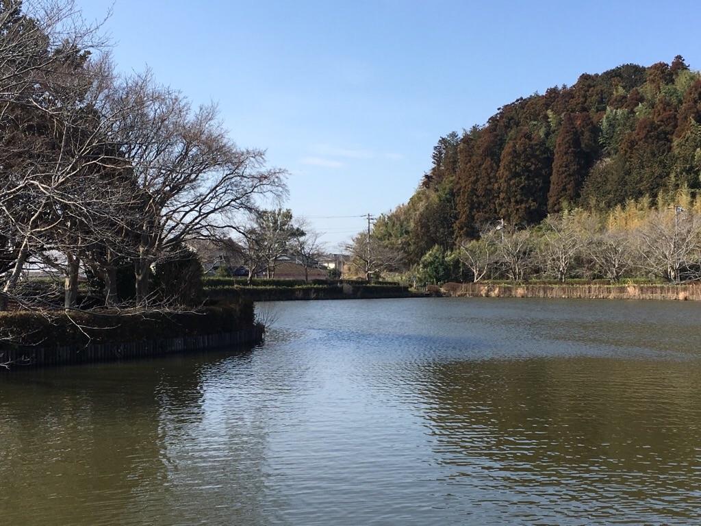 f:id:suguru-K:20190223184837j:image