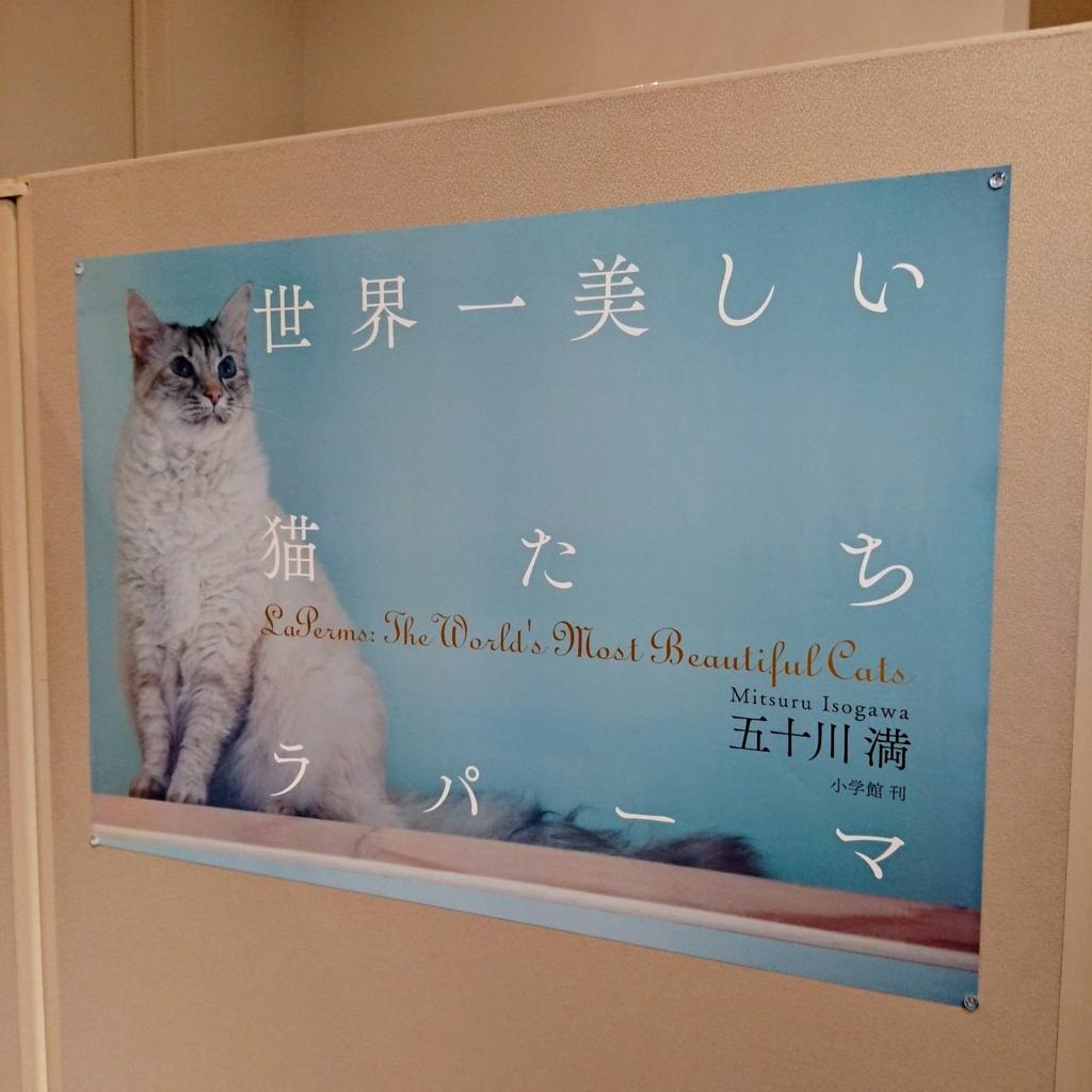 f:id:suguru66:20170310174550j:plain