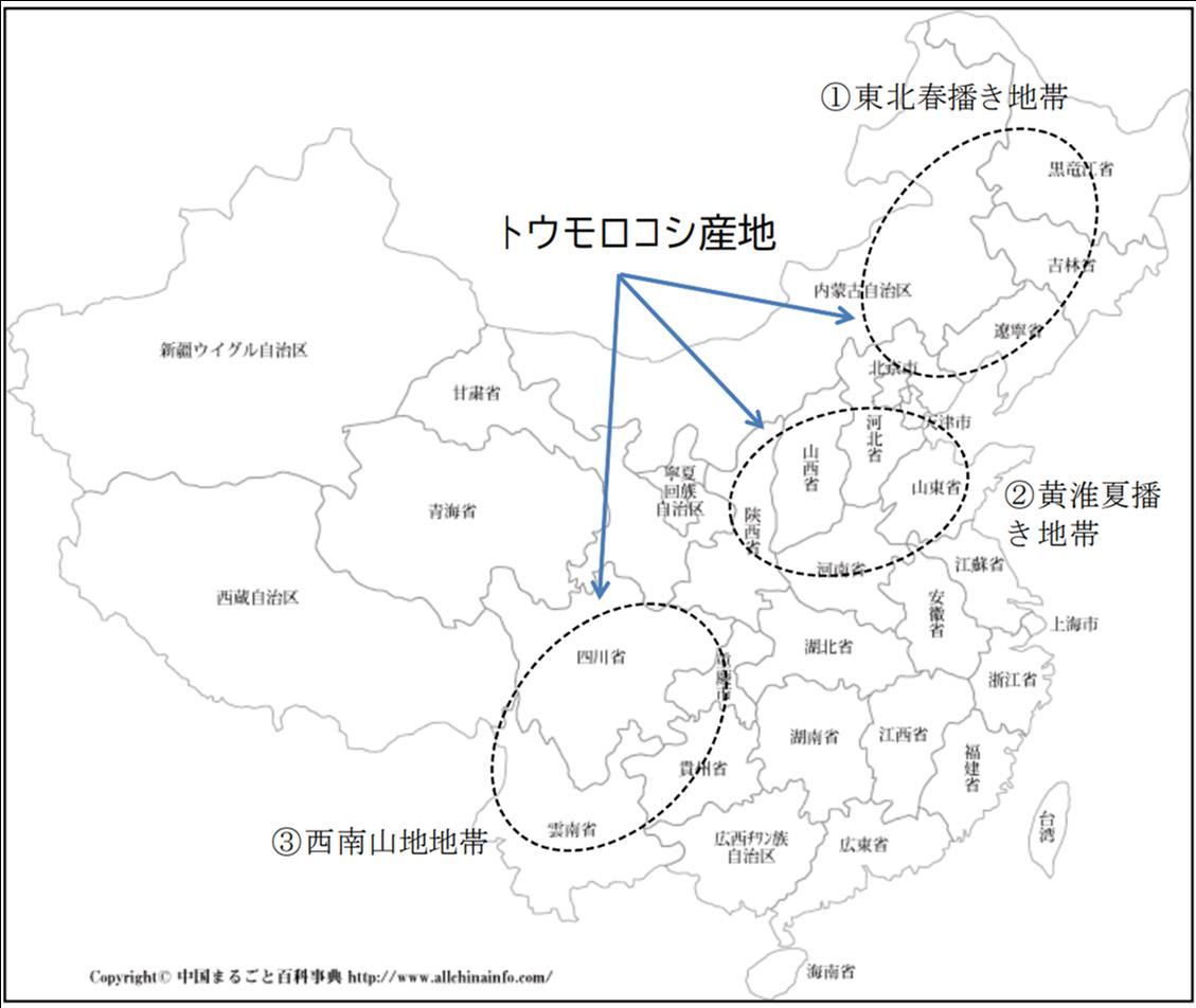 f:id:suguru_125:20200718074231j:plain