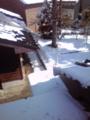 朝起きたら、窓の外は銀世界でした… 今日って本当に3月?