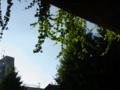 [風景]2011.09.12 千駄ヶ谷から原宿へ