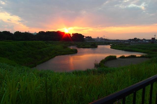 f:id:suijun-hibisukusu:20140703231435j:image