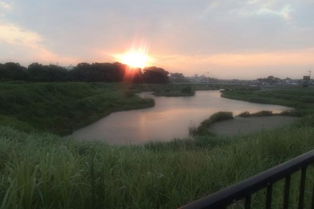 f:id:suijun-hibisukusu:20140703231436j:image