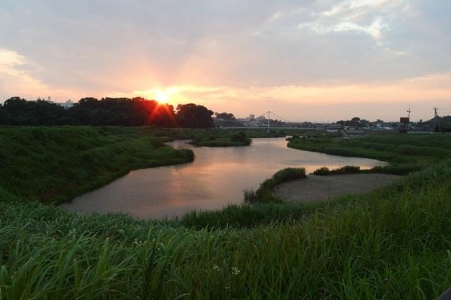 f:id:suijun-hibisukusu:20140703231438j:image