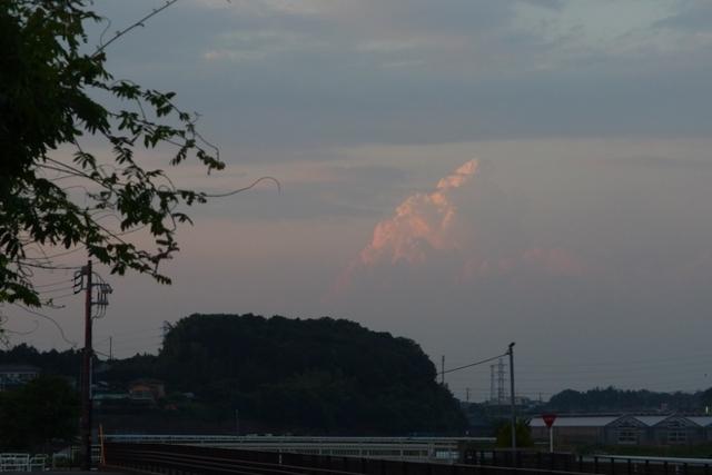 f:id:suijun-hibisukusu:20140703231440j:image