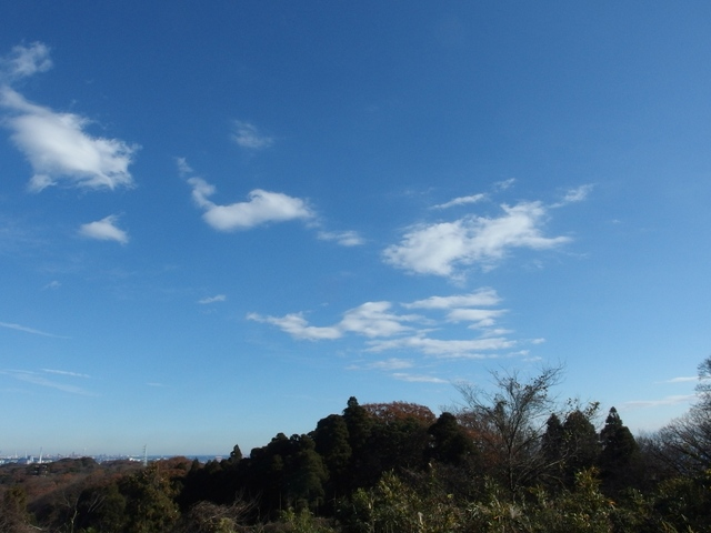 f:id:suijun-hibisukusu:20161218225159j:image