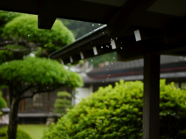 f:id:suijun-hibisukusu:20170629225502j:image