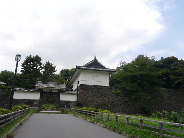 f:id:suijun-hibisukusu:20170805231210j:image