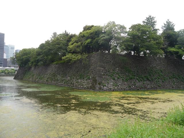 f:id:suijun-hibisukusu:20170805231213j:image