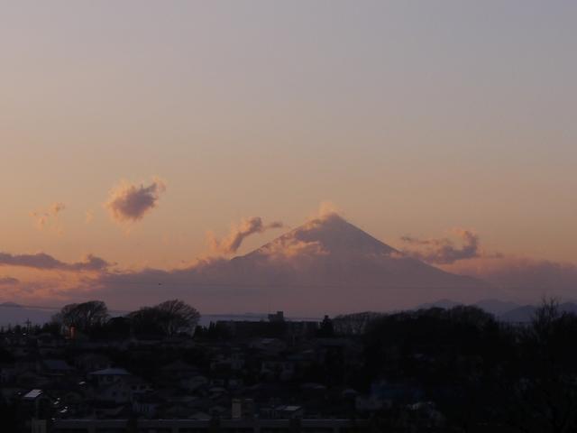 f:id:suijun-hibisukusu:20180118223833j:image
