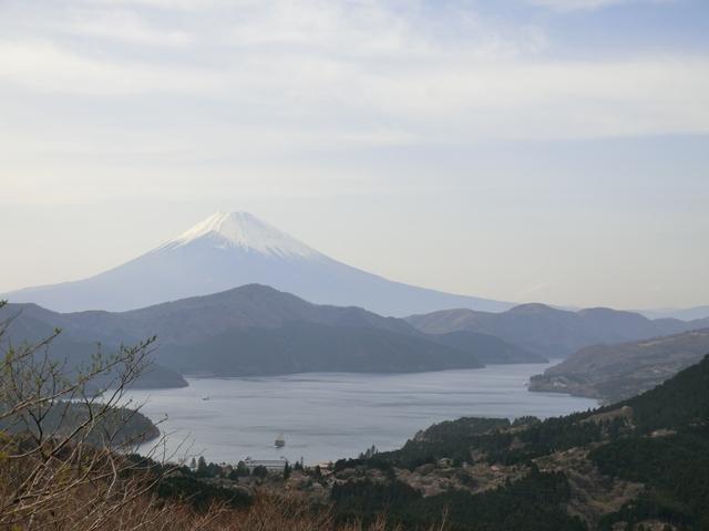 f:id:suijun-hibisukusu:20180419224637j:image