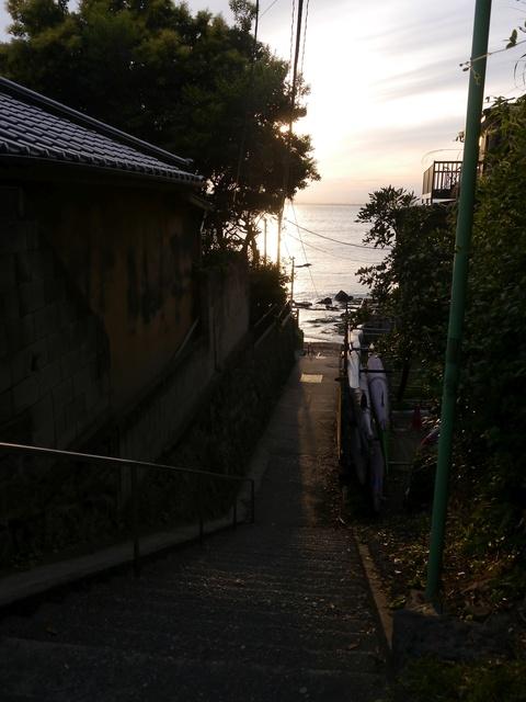 f:id:suijun-hibisukusu:20180502224644j:image